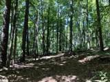 0 Trail Tree Drive - Photo 5