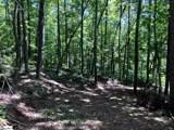 0 Trail Tree Drive - Photo 6
