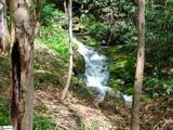 100 Hidden Park Trail - Photo 3