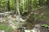 91 Roco Trail - Photo 16