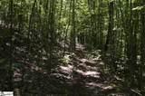 91 Roco Trail - Photo 17