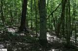 91 Roco Trail - Photo 20