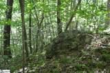 91 Roco Trail - Photo 21