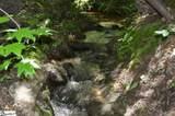 91 Roco Trail - Photo 4