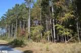 Peninsula Pines Drive - Photo 16
