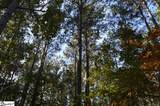 Peninsula Pines Drive - Photo 6