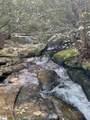 715 Timberbrook Trail - Photo 10
