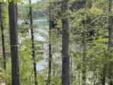 715 Timberbrook Trail - Photo 11