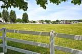 310 Saddlebred Drive - Photo 4