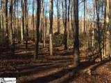 66 The Cliffs Parkway - Photo 4