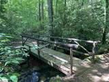 601 Tree Haven Trail - Photo 3