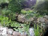 7 Meadow Springs Lane - Photo 28