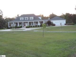 3307 W Georgia Road, Piedmont, SC 29637 (#1329695) :: Sparkman Skillin ERA