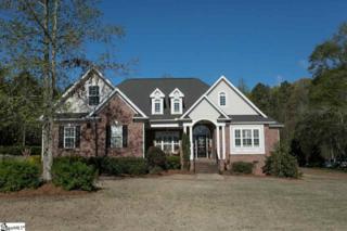 107 Birch Meadow Drive, Piedmont, SC 29673 (#1341683) :: Hamilton & Co. of Keller Williams