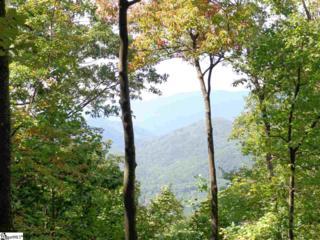 112 Fall Breeze Trail, Travelers Rest, SC 29690 (#1341942) :: Sparkman Skillin ERA