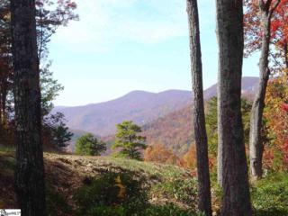 905 Mountain Summit Road, Travelers Rest, SC 29690 (#1342149) :: Sparkman Skillin ERA