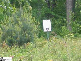 102 Park Green Way, Landrum, SC 29356 (#1342404) :: Hamilton & Co. of Keller Williams