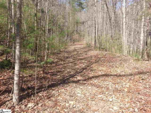 126 Fireside Lane, Pickens, SC 29671 (#1318604) :: Mossy Oak Properties Land and Luxury