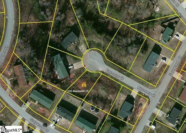 105 Baymont Court, Fountain Inn, SC 29644 (#1346004) :: Hamilton & Co. of Keller Williams Greenville Upstate