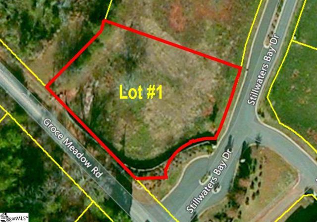 201 Stillwaters Bay Drive, Taylors, SC 29687 (#1350203) :: Hamilton & Co. of Keller Williams Greenville Upstate