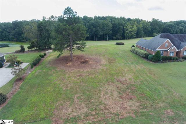 360 Royal Burgess Drive, Campobello, SC 29322 (#1352255) :: J. Michael Manley Team
