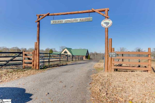 169 Berry Road, Pelzer, SC 29669 (#1357676) :: Hamilton & Co. of Keller Williams Greenville Upstate