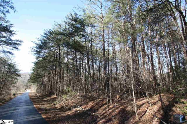 0 Mush Creek Hill Road, Travelers Rest, SC 29690 (#1358755) :: Bachtel Group