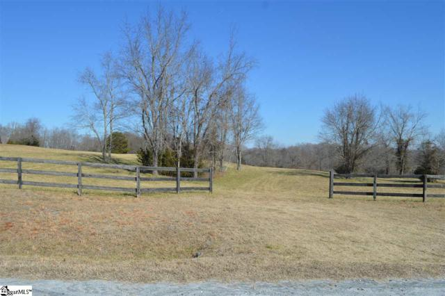340 Fairview Farms Road, Campobello, SC 29322 (MLS #1359150) :: Resource Realty Group