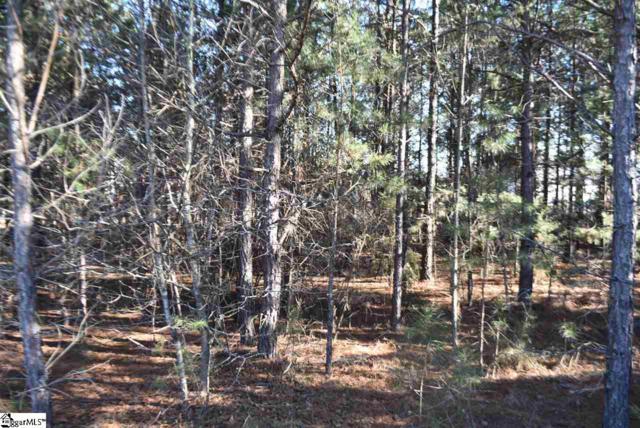 105 Gunter Road, Piedmont, SC 29673 (#1360836) :: Hamilton & Co. of Keller Williams Greenville Upstate