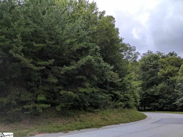 0 Indian Pipe Trail, Landrum, SC 29356 (#1361305) :: Hamilton & Co. of Keller Williams Greenville Upstate