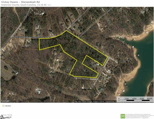 Shenandoah Road, Townville, SC 29689 (#1361754) :: The Toates Team