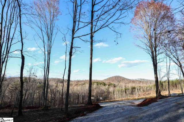 17 Trammell Mountain Trail, Travelers Rest, SC 29690 (#1362610) :: The Toates Team
