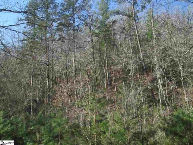 250 Peace Trail, Mountain Rest, SC 29664 (MLS #1363743) :: Prime Realty