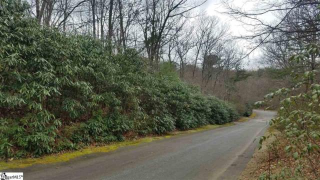 6 Larkspur Lane, Cleveland, SC 29635 (MLS #1364209) :: Resource Realty Group