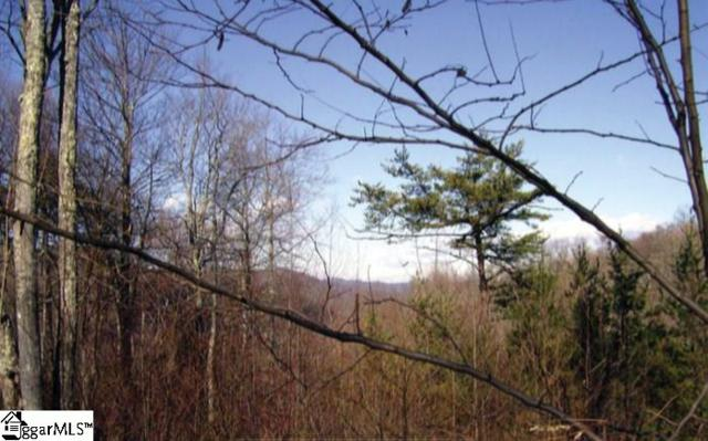 Mountain Summit Road, Zirconia, NC 28790 (#1365723) :: Coldwell Banker Caine