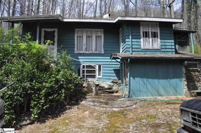 2902 Us 176 Highway, Tryon, NC 28782 (#1367780) :: RE/MAX RESULTS