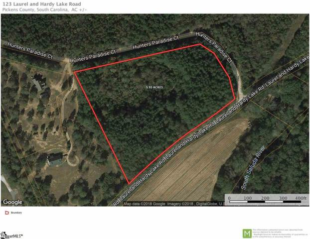 123 Laurel And Hardy Lake Road, Marietta, SC 29661 (#1368956) :: Connie Rice and Partners