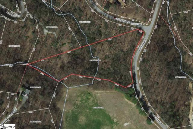 1 Indian Pipe Trail, Landrum, SC 29356 (#1369251) :: The Toates Team