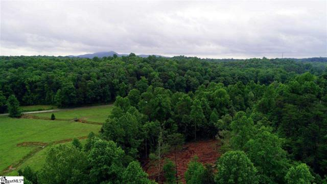 40 Mccarrell Road, Travelers Rest, SC 29690 (#1369608) :: The Toates Team