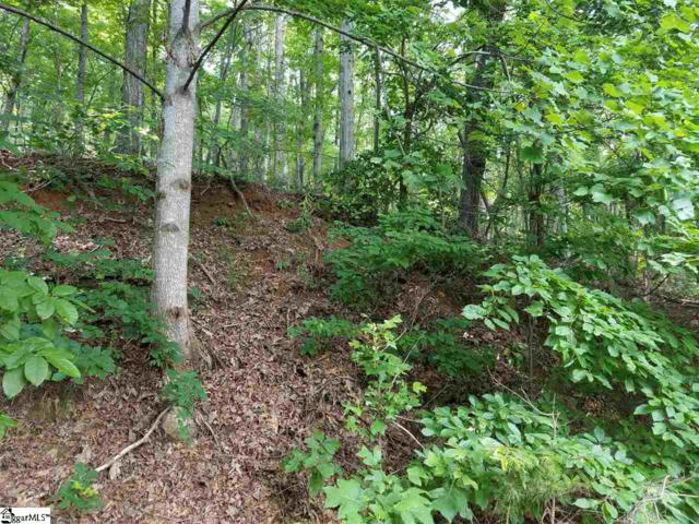 821 Whispering Falls Drive, Pickens, SC 29671 (#1370205) :: Mossy Oak Properties Land and Luxury