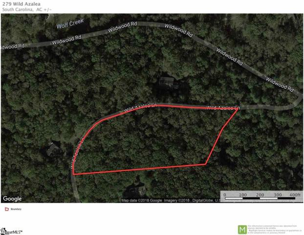 279 Wild Azalea Lane, Marietta, SC 29661 (#1370273) :: The Toates Team