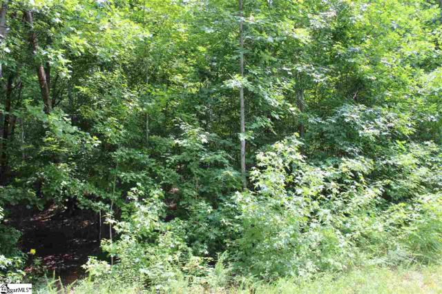 0 Old Rockhouse Road, Greenville, SC 29609 (#1372663) :: J. Michael Manley Team