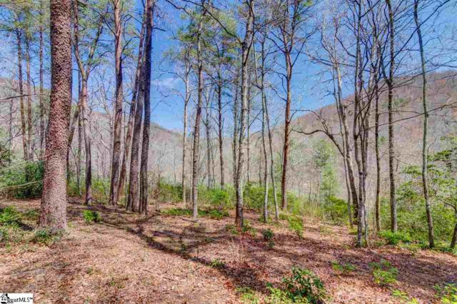 209 Ridge Haven Trail, Travelers Rest, SC 29690 (#1376475) :: The Toates Team