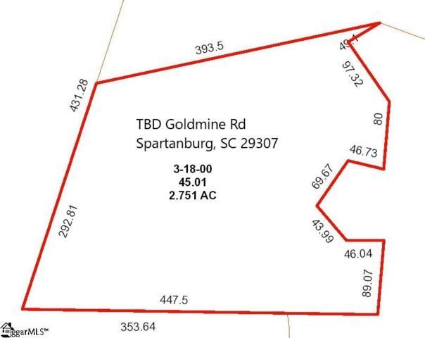 Goldmine Road, Spartanburg, SC 29307 (#1376833) :: The Toates Team