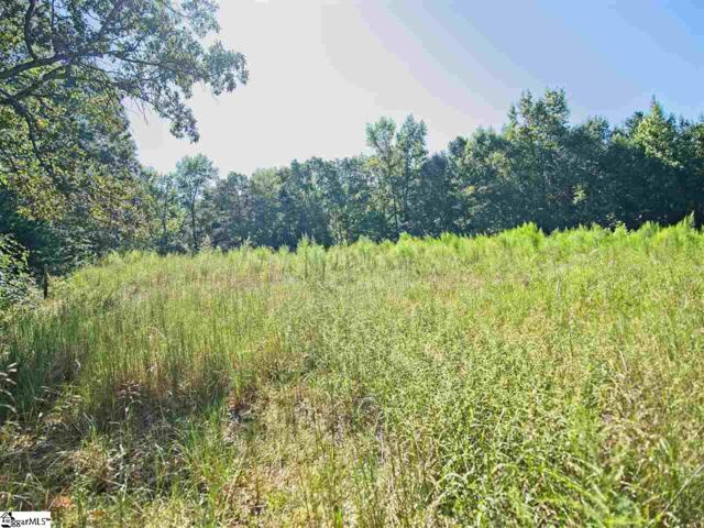 00 Griffin Mill Road, Piedmont, SC 29673 (#1377054) :: The Toates Team