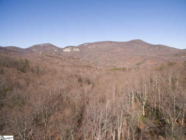 5 Outlook Ledge Road, Landrum, SC 29356 (#1377800) :: The Toates Team