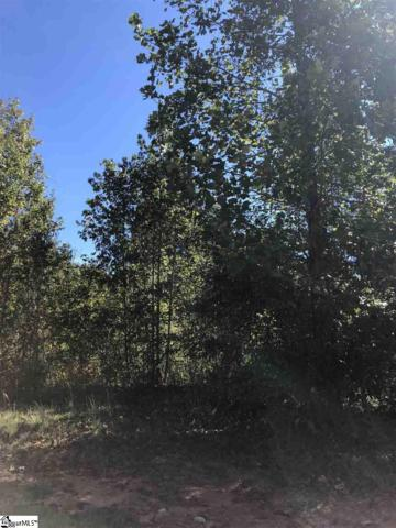 214 Audubon Acres Drive, Easley, SC 29642 (#1378485) :: The Haro Group of Keller Williams