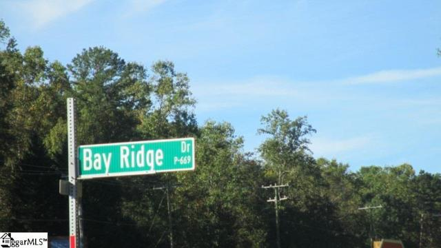 000 Bay Ridge Drive, Salem, SC 29676 (#1378962) :: Connie Rice and Partners