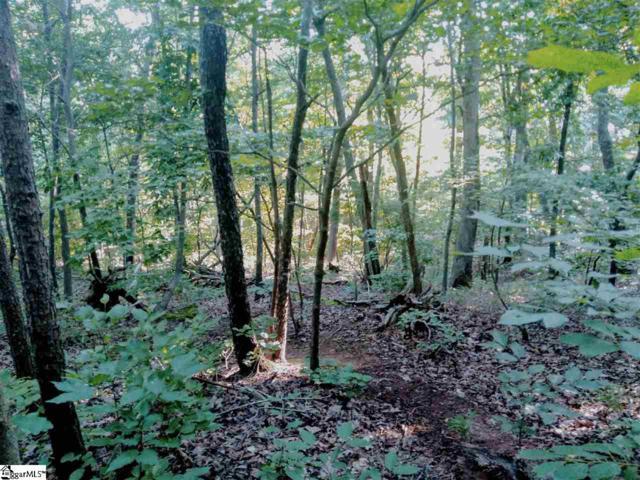649 Forest Haven Court, Greenville, SC 29613 (#1379115) :: J. Michael Manley Team