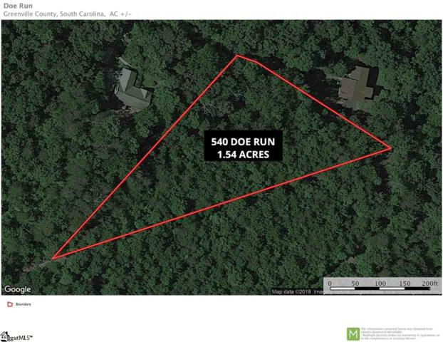 540 Doe Run Road, Pickens, SC 29671 (MLS #1379163) :: Resource Realty Group